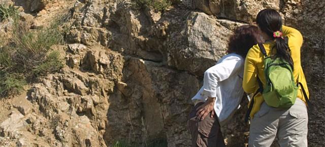 Apadrina una roca