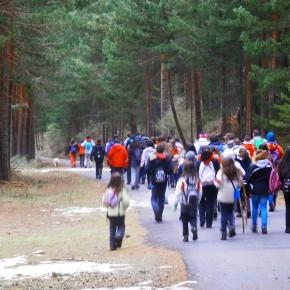 Rutas guiadas por el Parque Nacional de la Sierra de Guadarrama. Vertiente segoviana