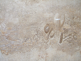 De roca a roca (Diez y Vegas, 2011), portal Corpus 3
