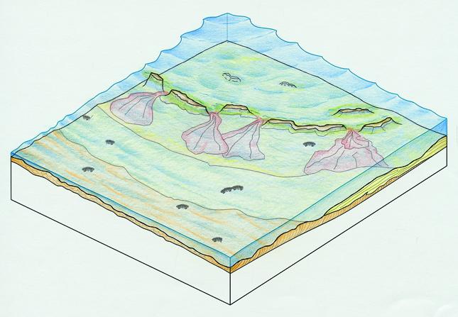 Las raices del paisaje (Diez y Martin, 2005) 2